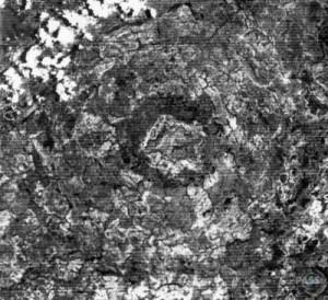 Cratera de Araguainha (Imagem do satélite LANDSAT)