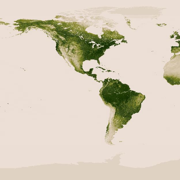 Parte da imagem da Terra (projeção Mercator) mostrando as regiões com maiores densidades de vegetação. (Fonte: NASA/NOAA. Navegue na imagem completa aqui)